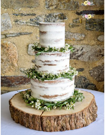 Semi naked cake - Floral Garlands (Twigs & Greens) - Trevenna Barns